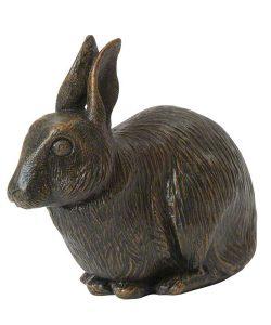 Hase / Kaninchen