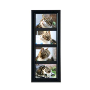 PETRIBUTES_Tribute-Frame-MULTI_Satin-Black_01