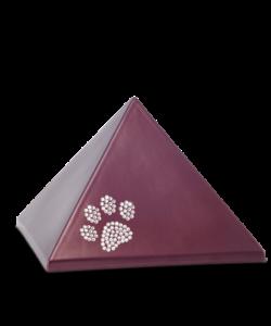 Edition Pyramide mit Pfötchen